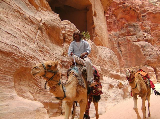 Wycieczki po Bliskim Wschodzie